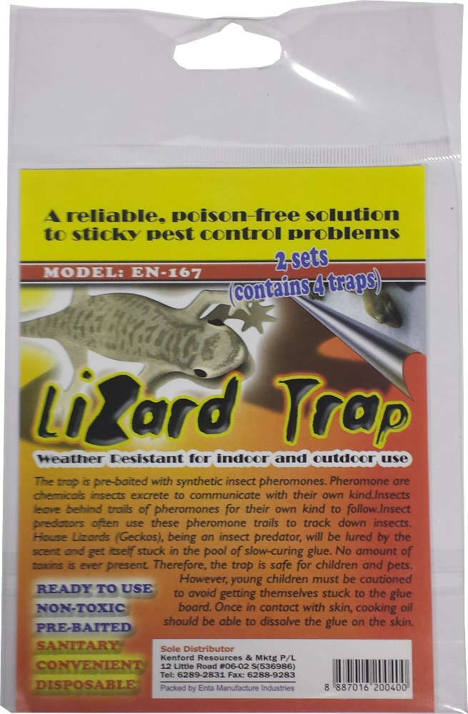 Lizard Trap Non Toxic Insect Amp Pest Control Products
